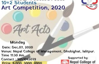 'Unified Artist in Nepal Competition 2020''